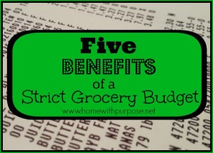 Five Benefits of a Strict Grocery Budget