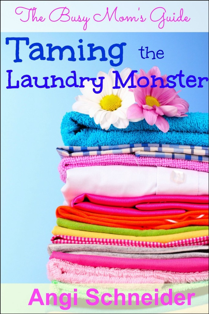 The Busy Mom's Guide: Taming the Laundry Monster {A Giveaway!} www.homewithpurpose.net