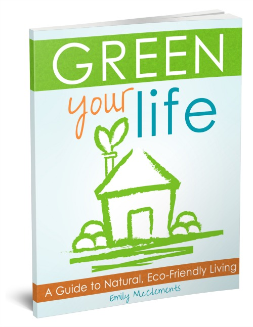 Green_Your_Life-3d_book_cover_500